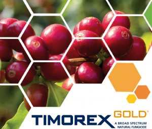 Timorex Gold® extends its use against Ojo de Gallo and Cercospora in coffee