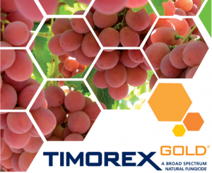Timorex Gold® healthy table grapes, no residues