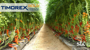 "Stockton Group presented Timorex Gold at ""VII International Horticultural Congress-FASAGUA"" in Guatemala"