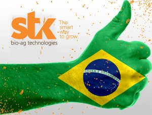 Stockton Brazil Aligns Organization with Timorex Gold Upcoming Launch