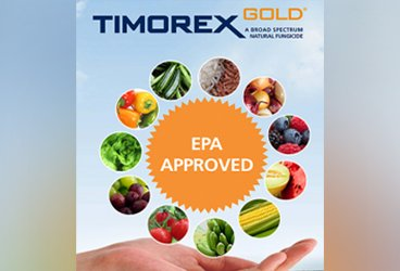 Stockton's Timorex Gold Biofungicide Receives EPA Registration