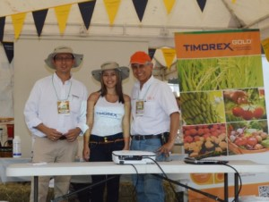 Timorex Gold consolidates its operations in Colombia