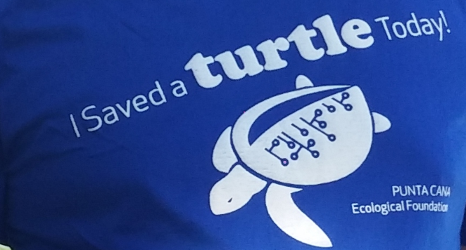 Stockton employees contribute to the protection of Sea Turtles from extinction