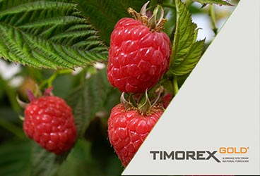 Chile Renews Registration for TIMOREX GOLD® and Expands Uses to Additional Fruits and Vegetables Through 2022
