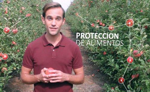 Proteccion – De Alimentos